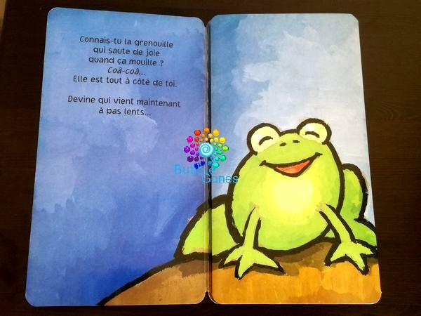 lecture enfantine grenouille qui va se transformer